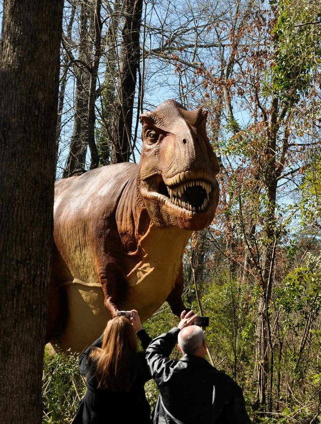 0313 Dinosaur Zoo