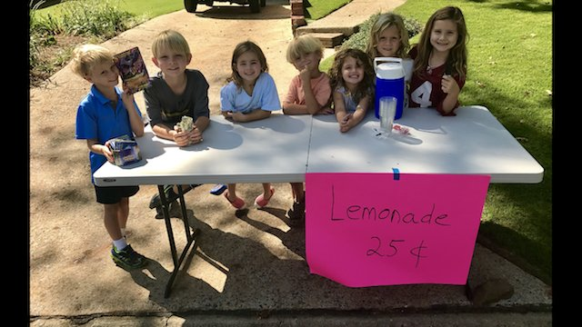 VL SH MBE Lemonade Stand .PNG