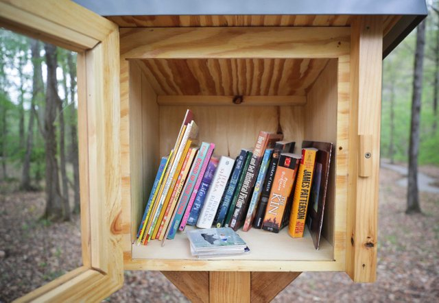 VL-FEAT-Little-Free-Libraries_SNF_9976.jpg