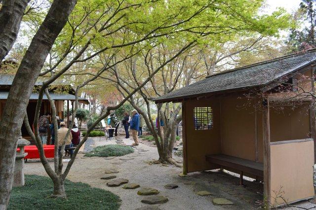 VL EVENTS cherry blossom festival17.jpg