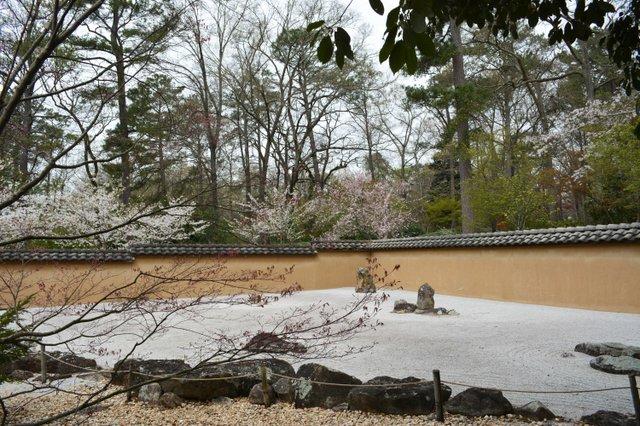VL EVENTS cherry blossom festival18.jpg