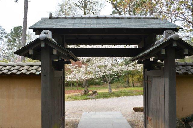 VL EVENTS cherry blossom festival19.jpg
