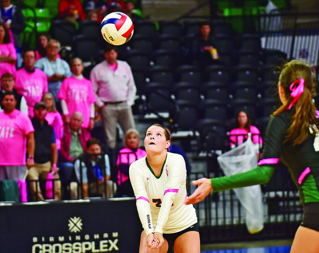 VL B COVER All-South Metro volleyball 2.jpg