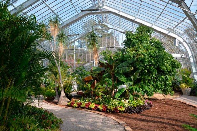 Botanical Gardens Conservatory Reopening