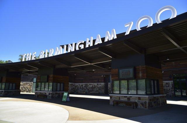 Birmingham Zoo during COVID-19