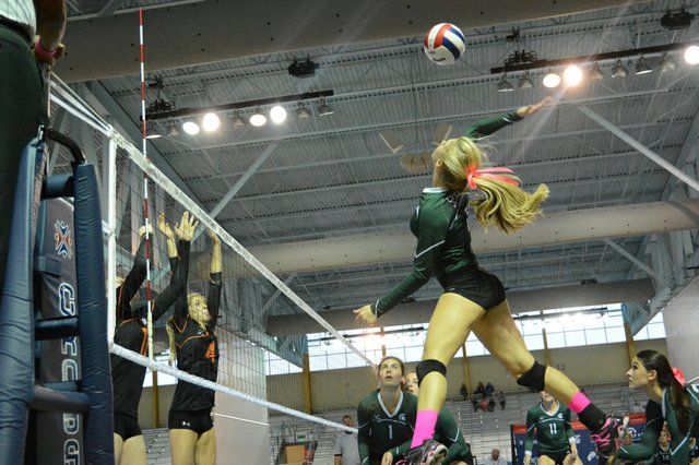 Mountain Brook Volleyball Champions (7 of 50).jpg
