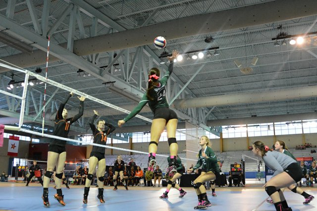 Mountain Brook Volleyball Champions (12 of 50).jpg