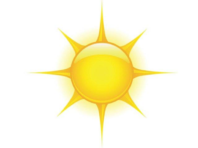 1 Sunny copy.jpg