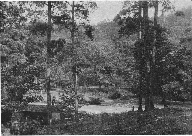 0612 JM C Brook and Bridge