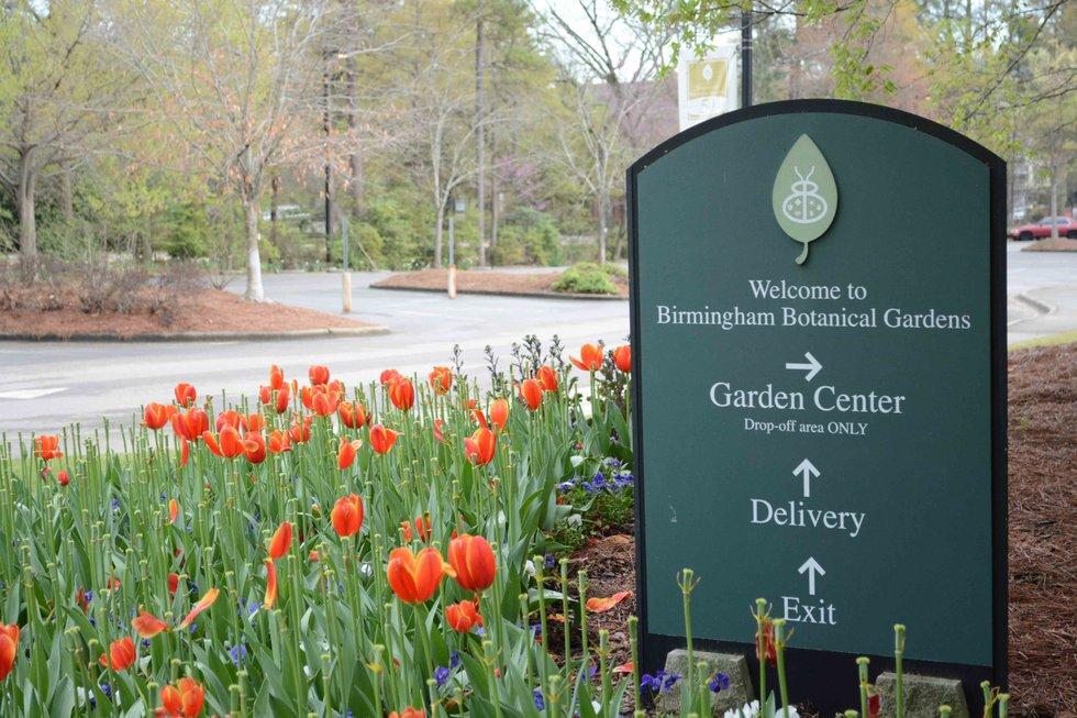 City Botanical Gardens 3