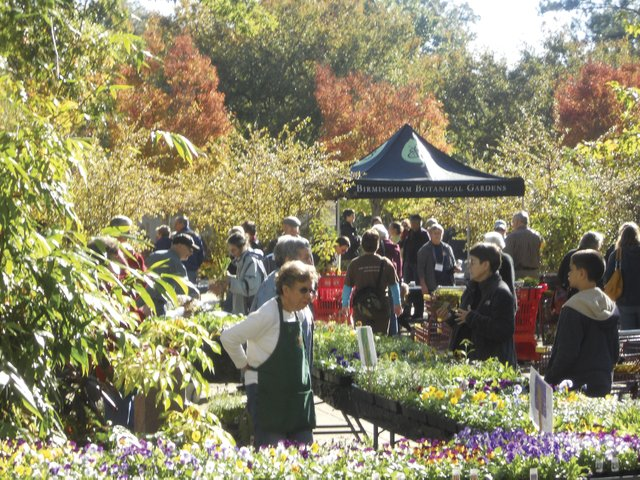 VL-EVENTS-Fall-Plant-Sale.jpg