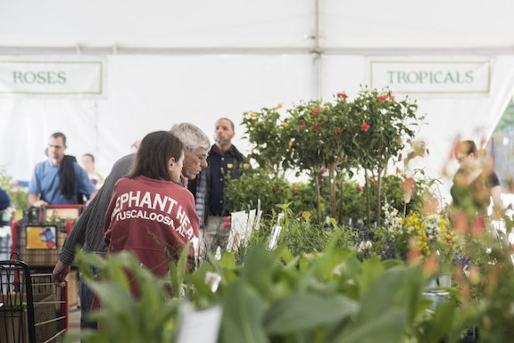 VL EVENTS SpringPlantSale-3.jpg
